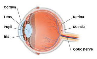 Retinal detachment treated successfully at AEHI, Navi Mumbai, India