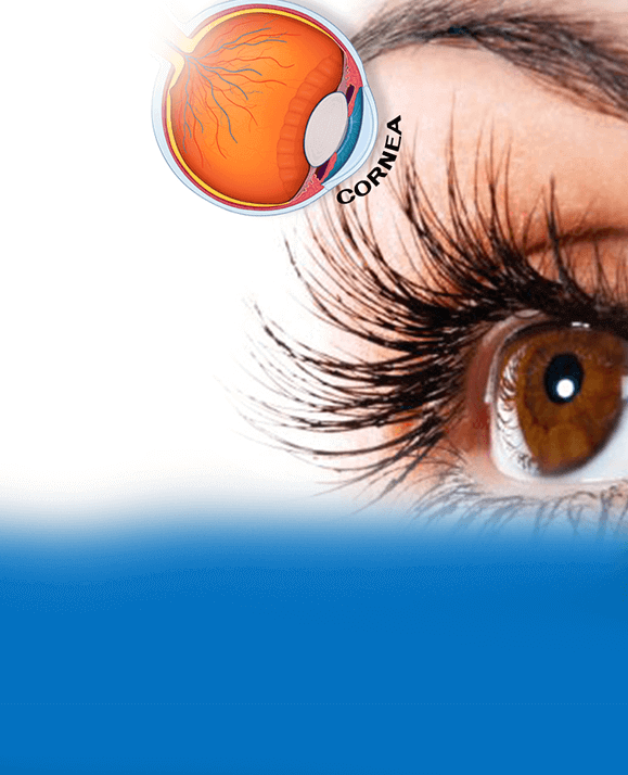 Cornea eye disease treatment